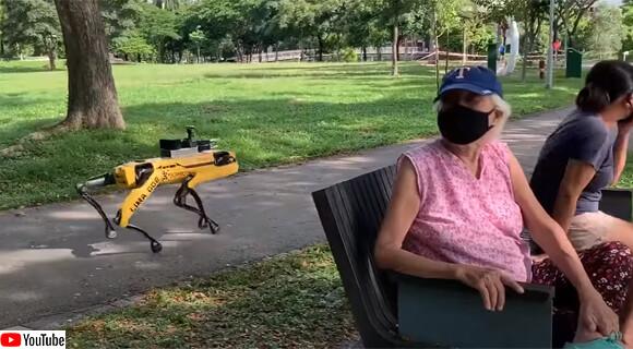 犬型ロボットが社会的距離を監視