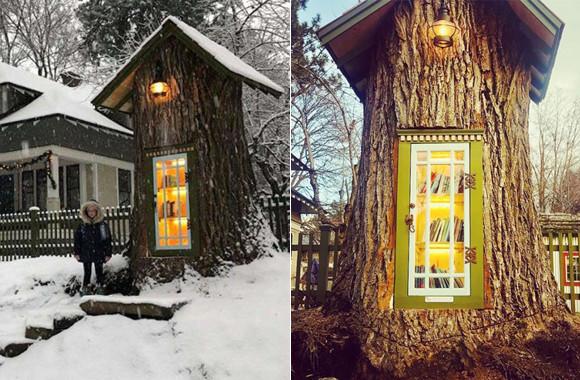 朽ち果てるのを待つだけとなった樹齢110年の大木に第二の人生が与えられた。小さな無料図書館に生まれ変わる