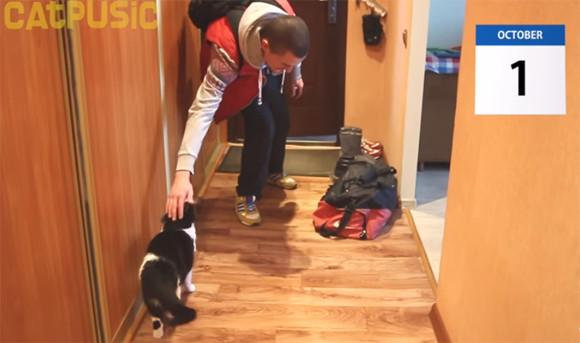猫模様いろいろ。20日間家を留守にした飼い主が帰宅した瞬間、この猫はこんな行動をとった。