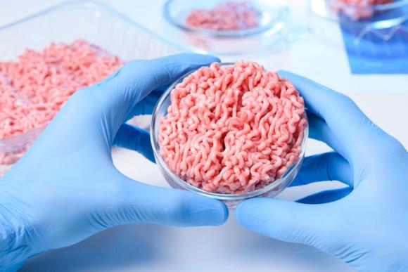 2040年、世界の肉の60%が人工肉に置き換わると予測される(米研究)