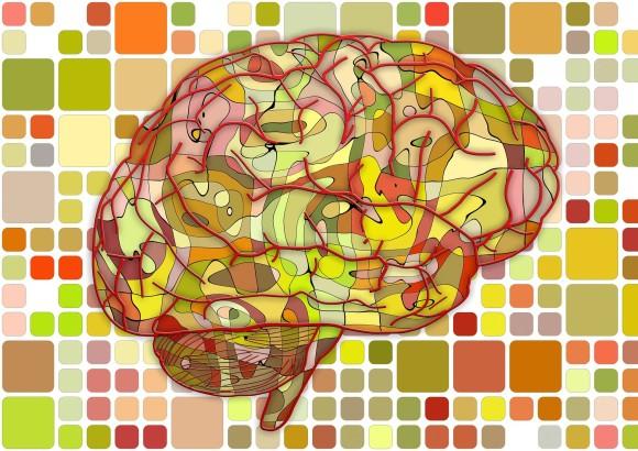 超音波で昏睡状態に陥った患者の脳の復活に成功(UCLA)