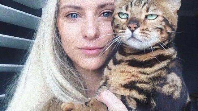 自撮りに巻き込まれるのが嫌な猫ズの形相をみてみよう