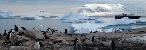 antarctica-940554_640_e