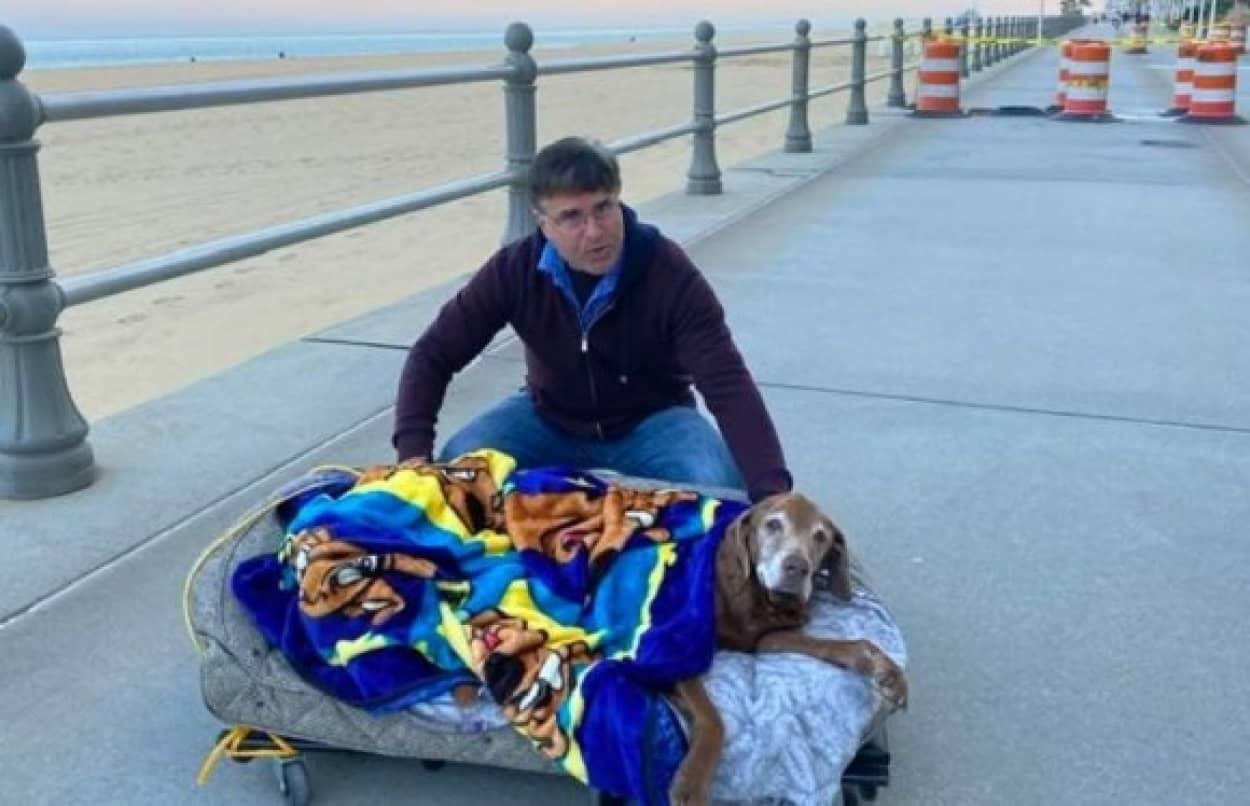 最後に愛犬に海を見せたい。飼い主は可動式のベッドを作り最後に最高の思い出をプレゼント