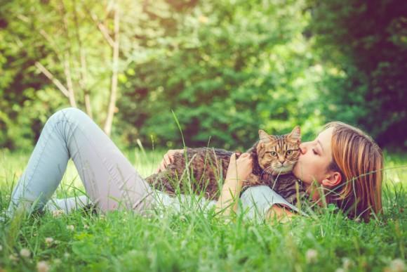 猫を抱きしめ、モフることで得られる6つの効能