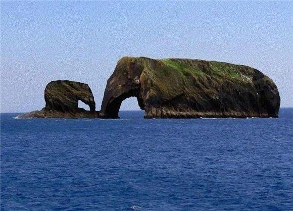 自然が作り上げた動物たち。ゾウ、ウマ、ハリネズミなど、あの動物にそっくりに見える岩(※コラ画像含む)