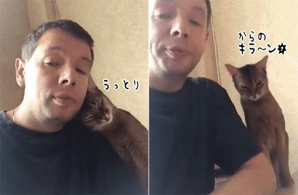違うの、本能がそうさせるの!飼い主への愛情とチキンの間で揺れ動く猫の葛藤