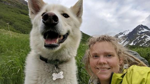 見知らぬ犬の無償の愛が奇跡を生む。怪我を負い、川に流されそうになったハイカーを2度救ったアラスカン・ハスキー
