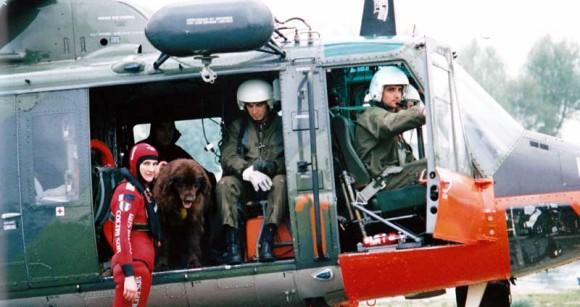 Water_rescue_dog_Italy_Sics_06_e