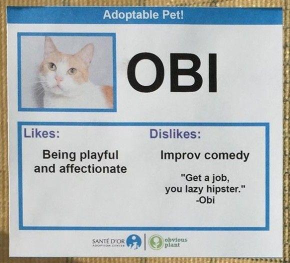 Obi_e