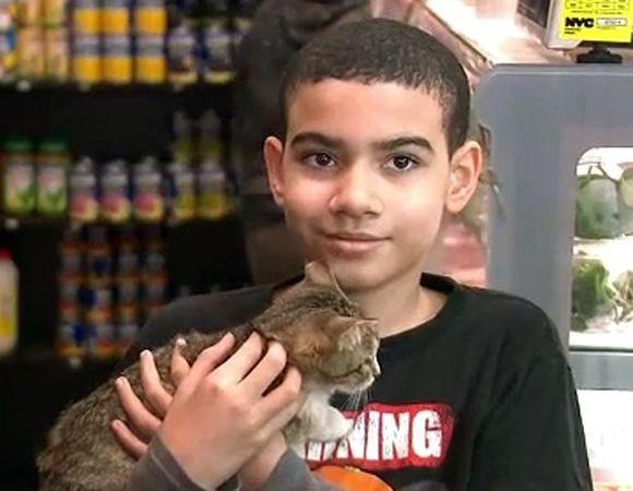 店の看板猫で自閉症の少年の心の支えだった愛猫が盗まれる。その後犯人は猫を返しに来て謝罪する(アメリカ)