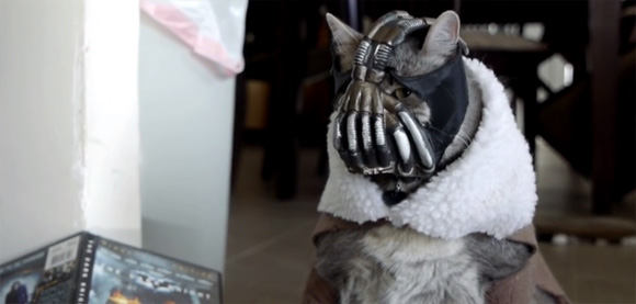 ダークサイドに堕ちた猫、ベイン・キャットの第二弾が遂に登場「BaneCat Episode 2」