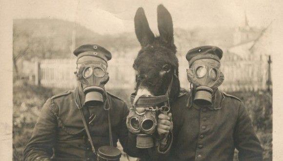 ネットで広まった歴史的瞬間を写し取った記憶に残る35の写真