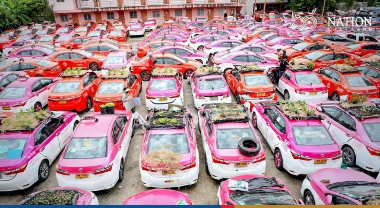 利用していない車で野菜栽培を始めたタイのタクシー会社