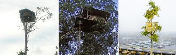 PLUS ONE LIVING - 屋上のある家を木造戸建住宅 ...