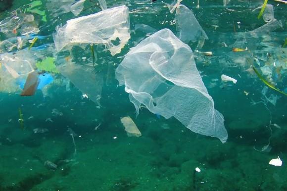 そして日本も...8か国の人の便からマイクロプラスチックが検出される