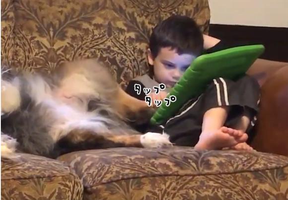 犬の肉球がタッチペン代わりに!今どきの子供事情