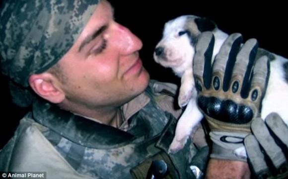 アメリカの若き兵士がイラクで戦死する数時間前に抱きかかえていた捨て犬。両親はこの犬を探し出し飼うことを決意。その後訪れた奇跡の瞬間