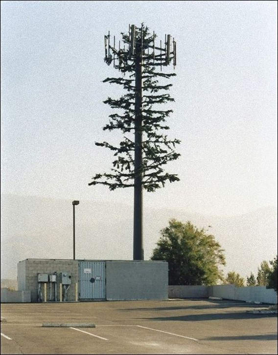 camouflaged_cell_phone_tower_16_e