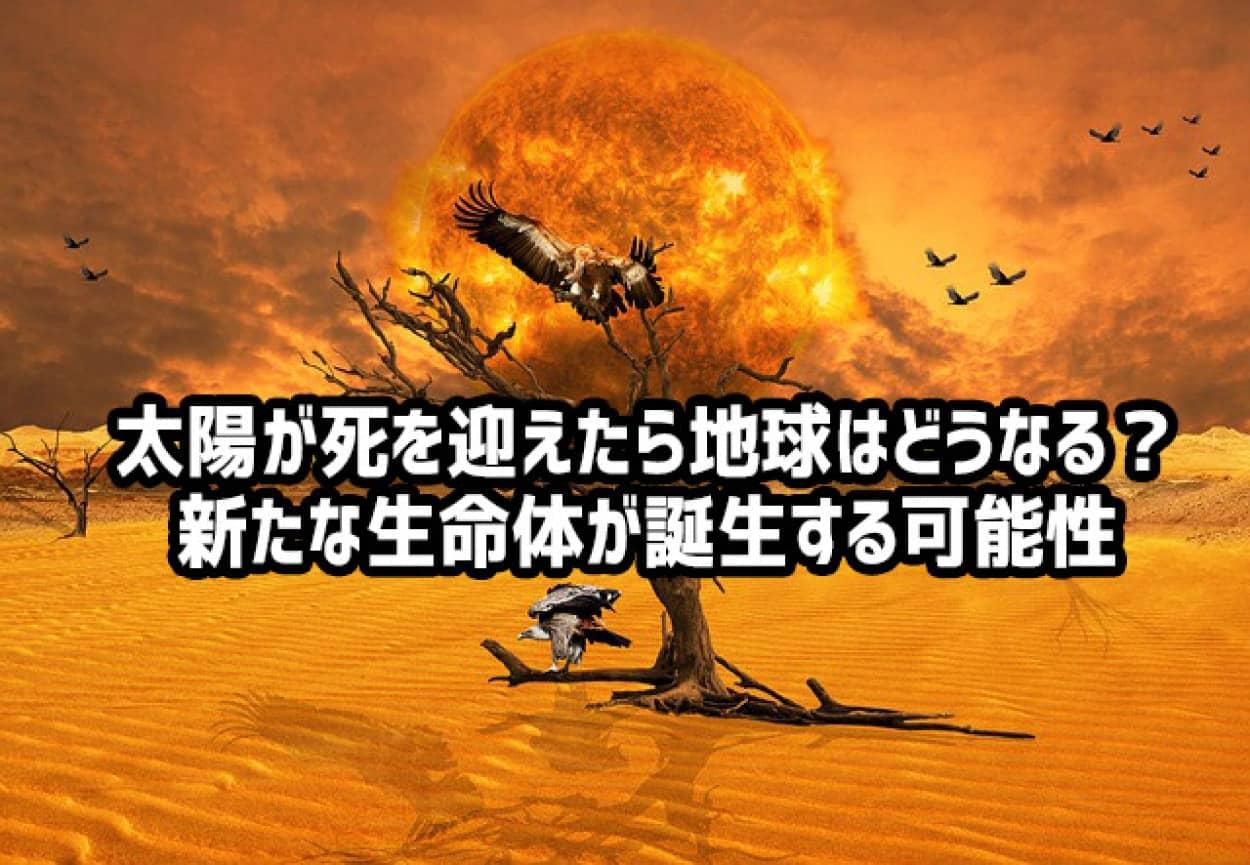 太陽が滅んだら地球上の生命体も滅ぶ。だが全く新しい生命体が誕生する可能性がある