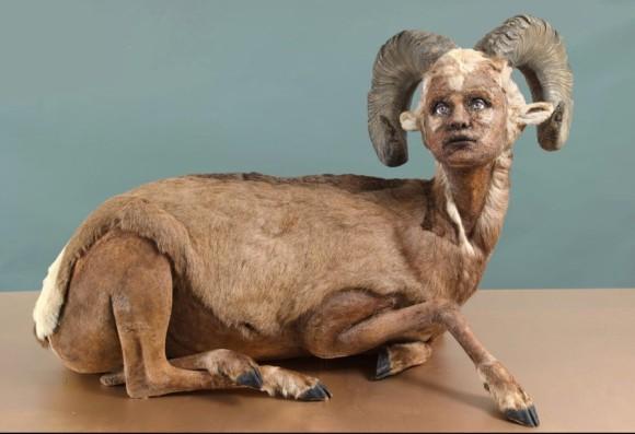 近未来の人類の進化した姿なのか?人間と動物を合体させたリアリティのあるハイブリッド彫刻