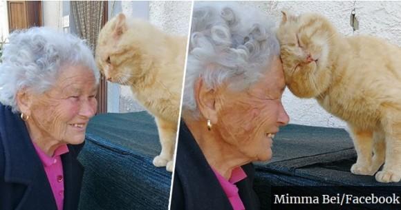 地震で行方不明になっていた飼い猫と4年ぶりに再会(イタリア)