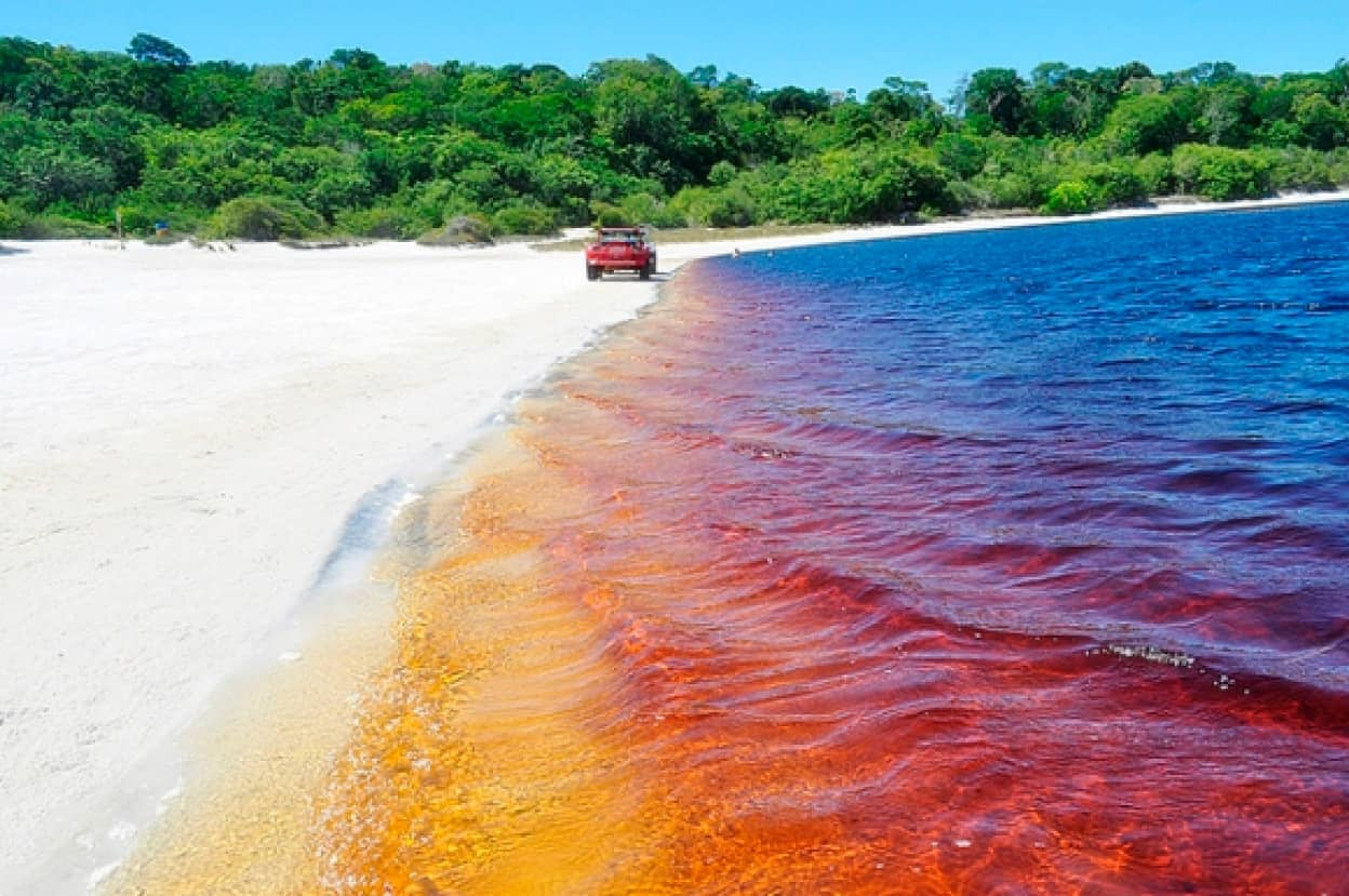 コカ・コーラ色の湖、ブラジルのアララクアラ湖