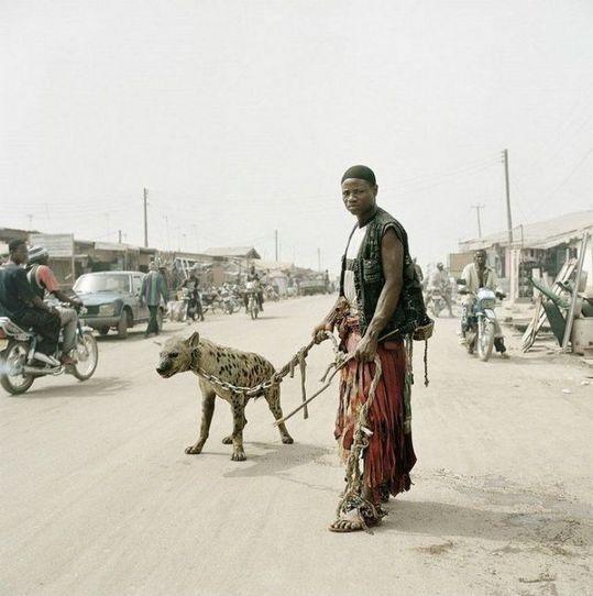 african_wild_pets_03