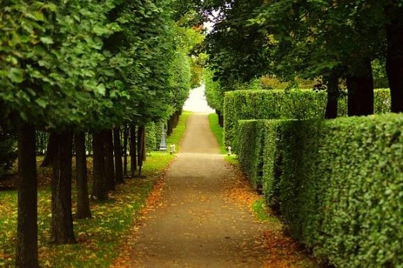 walkway-2550655_640_e