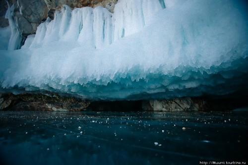 バイカル湖の画像 p1_12