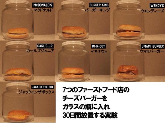各ハンバーガー屋のハンバーガーを30日放置してみた【結果はお前らの予想通りか