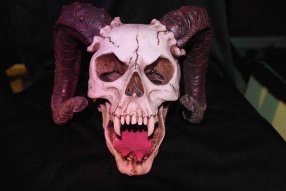 horned-skull_pixabay