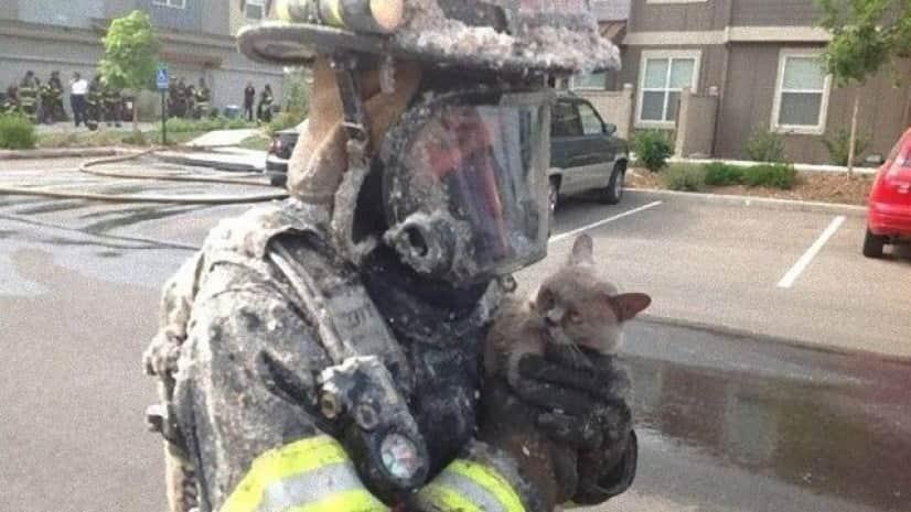 fireman-16_e