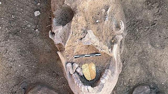 黄金の舌を持つミイラを発見