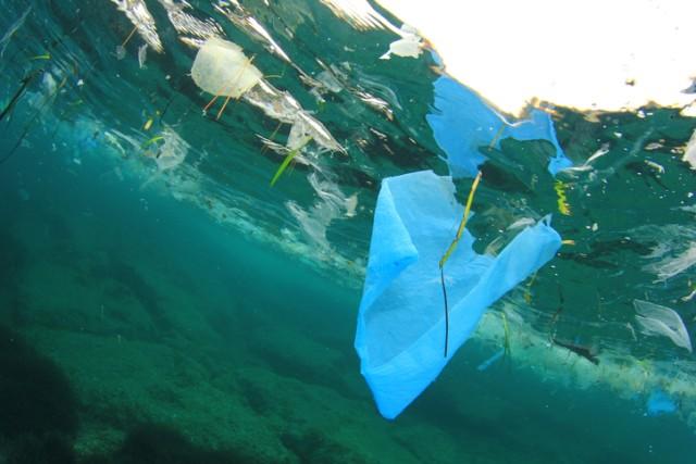 お湯で分解できる生分解性プラスチックが開発される