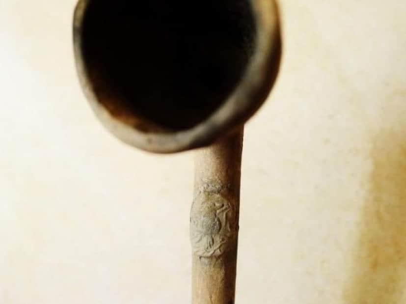 パイプの柄のカワセミ