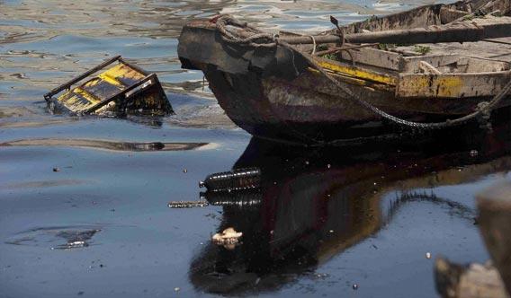 1 中国・大連の原油流出事故、原油除去の為、バクテリア23トンの投入を予定 : カラパイア カラ