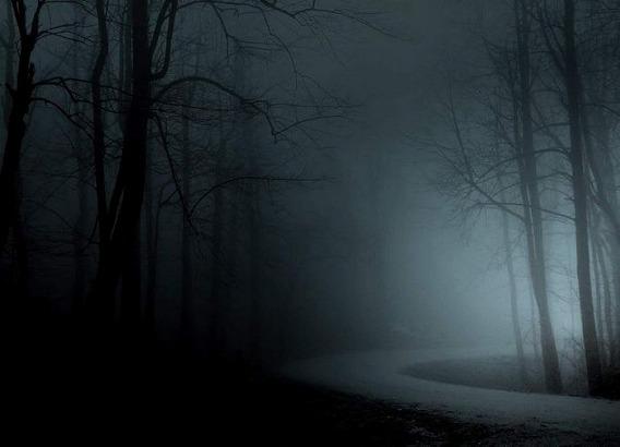 fog_27