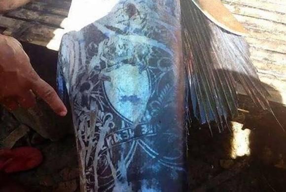 こ、これは!?魚のウロコに浮かび上がるミステリアスな紋様。ついにその謎がついに明らかに(フィリピン)