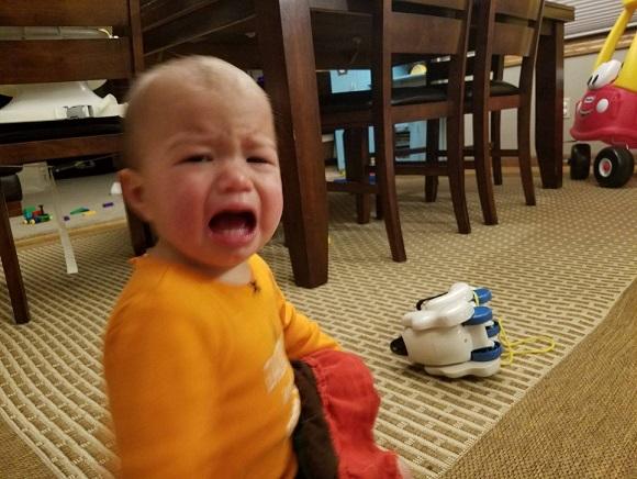 泣くのが仕事なのは知っていたけども...子どもたちが泣く理由があまりにも理不尽だった。
