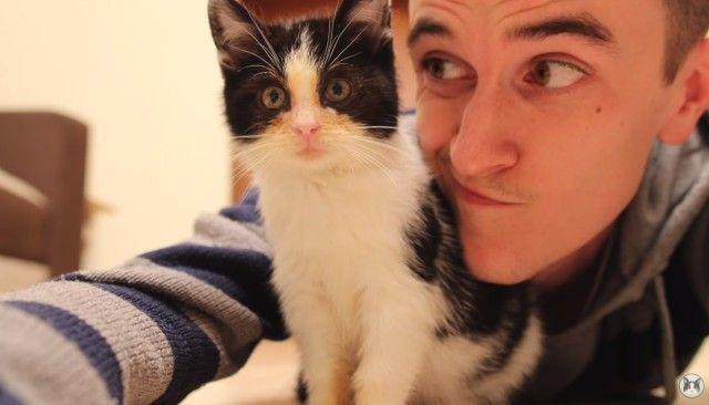 それは4年前に始まった。保護猫プーシクくんが幸せな猫生を手に入れるまで