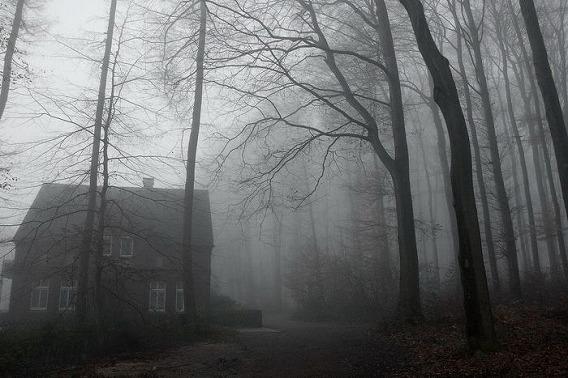 fog_05