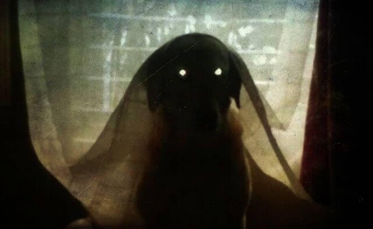 spooky0_ae