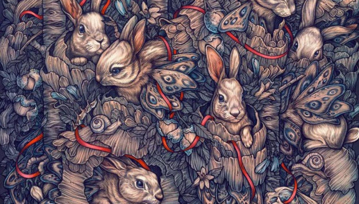 kate-ohara-illustration-13_e