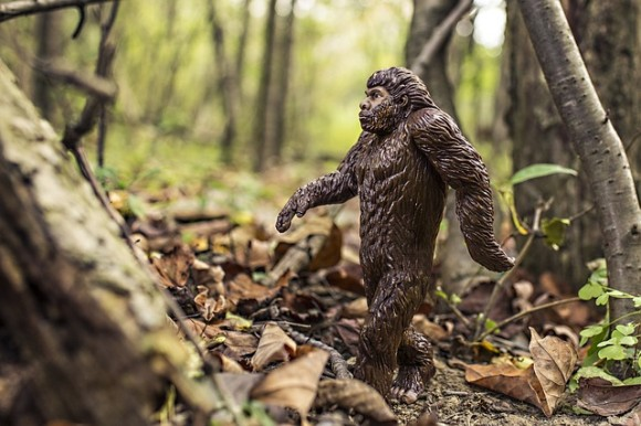 bigfoot-542546_640_e