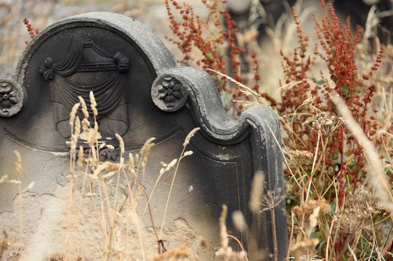 口の中に小鳥を詰められて埋葬されていた少女の謎