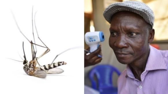 """""""おなら""""で半径6メートル以内の蚊を撃退できると主張する男性(ウガンダ)"""