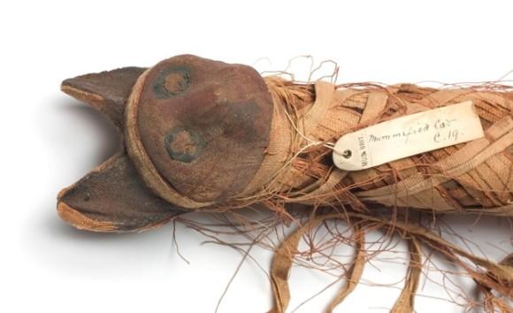 C0101823-Egyptian_mummified_cat-SPL_WEB_e