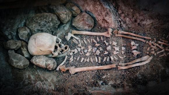 初期人類の骨