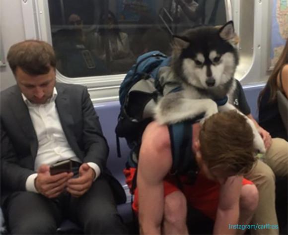 おかしかったりやさしかったり。地下鉄で見かけた人間模様いろいろ